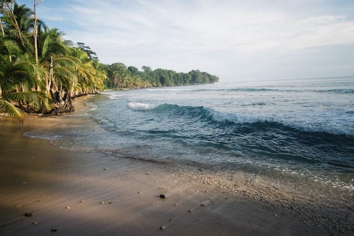 como sobrevivir ante una ola en un terremoto o tsunami