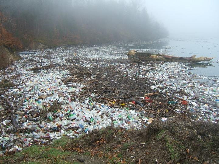 Contaminación por basura plástica en una orilla